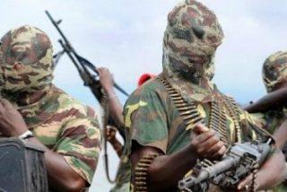 17 millones de personas sufren la violencia de Boko Haram en la cuenca del Lago Chad