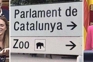 Así es el terrible Zoo en el que la abyecta Carme Forcadell ha convertido el Parlament de Cataluña