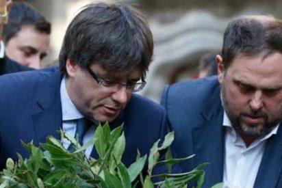 """Luis Ventoso: """"Nadie se atreve a hacer lo que toca: detener a esos golpistas, que es lisa y llanamente lo que demanda el pueblo español"""""""