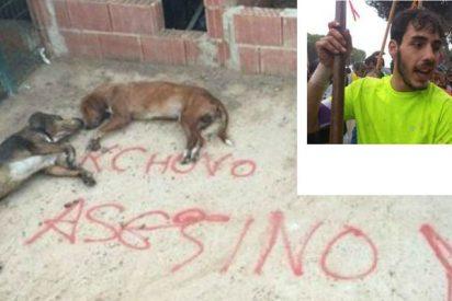 Fanáticos ecologistas matan con veneno a los perros del joven que lanceó al último Toro de la Vega