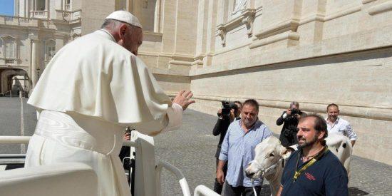 'Lou', el regalo más inesperado que jamás haya recibido un Papa