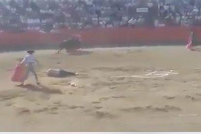 [VÍDEO] Un toro embiste a un antitaurino que saltó al ruedo en Carcassonne