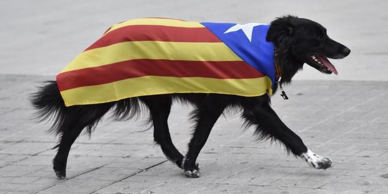El Gobierno Rajoy pretende mantener una Generalitat plagada de fanáticos independentistas