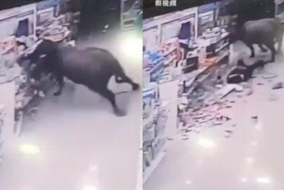 [VIDEO] Búfalo ataca a una embarazada en un supermercado en China