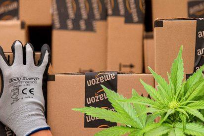 ¡Patinazo histórico!: Piden contenedores de plástico a Amazon y reciben 30 kilos de marihuana