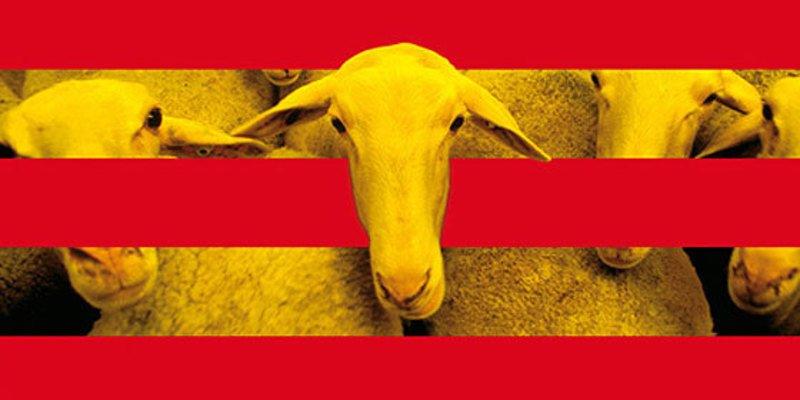 La desgarradora carta de una maestra catalana marcada de por vida
