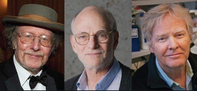 Los descubridores del 'reloj interno' del cuerpo reciben El Nobel de Medicina