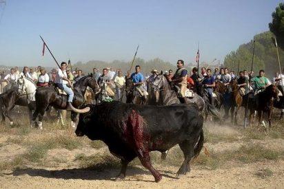 """Los tribunales dan la razón a la Junta en el cambio de formato de """"El Toro de la Vega"""""""
