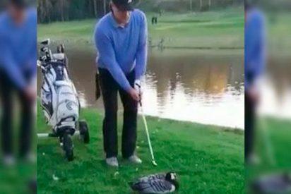 [VÍDEO] Golfista desalmado decapita a un ganso y es detenido por la Policía