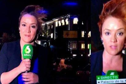 El flequillo de Cristina Pardo se 'independiza' en LaSexta de García Ferreras