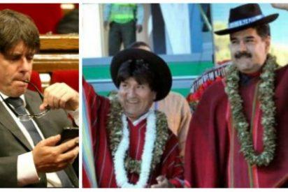 """Santiago González le hace un roto a 'Cocomocho': """"Tiene la capacidad intelectual de Evo Morales y el código moral de Nicolás Maduro"""""""