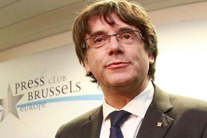 """Los analistas denigran a Puigdemont: """"Ha perdido la cabeza, ¡está para encerrar!"""""""