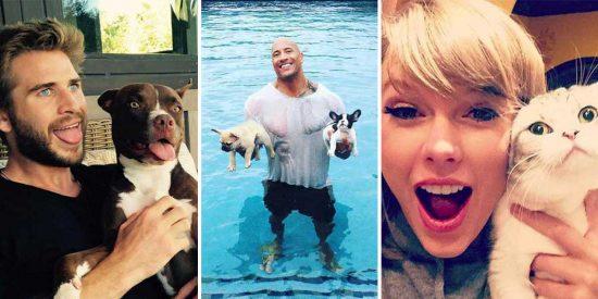 10 famosos y sus inseparables mascotas
