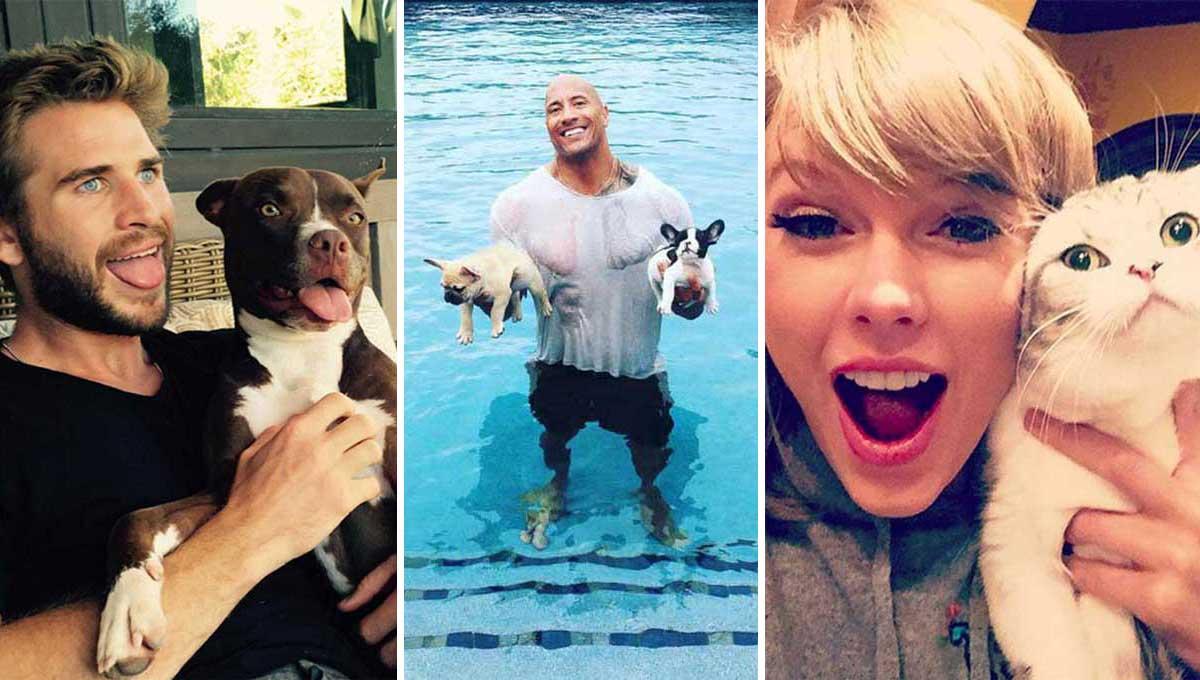 Perros y gatos: 10 famosos y sus inseparables mascotas