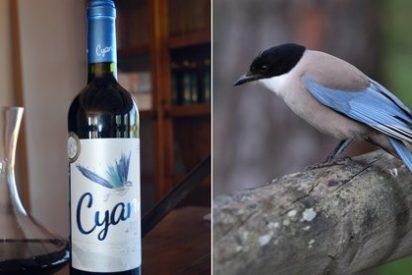Los vinos de Toro son una fuente de sorpresas: una misteriosa ave es la nueva imagen de un asombroso tinto