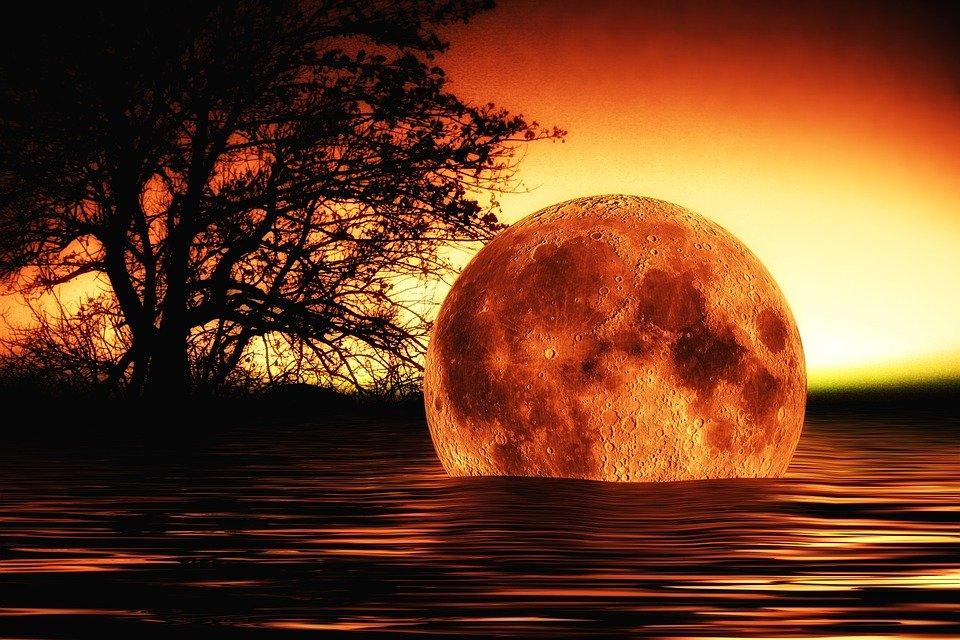 La llegada del Anticristo ya ha sido profetizada, siete años de caos y el choque de un planeta con la Tierra