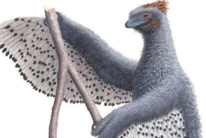 No todos los dinosaurios fueron tan fieros como los pintan