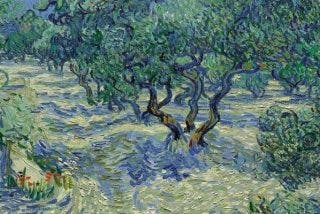 Descubren un saltamontes que llevaba más de un siglo incrustado en un cuadro de Van Gogh