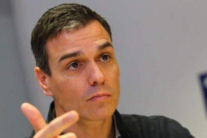 Cabreo sarraceno en las bases del PSOE contra el 'sueldazo' de Pedro Sánchez