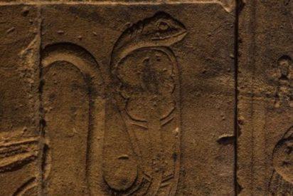 ¿Qué es la serpiente del faraón que tanto intriga a los científicos?