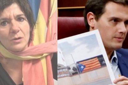 """La pirómana de TV3 Empar Moliner llama """"tontito"""" a Albert Rivera por denunciar el adoctrinamiento de la escuela catalana"""