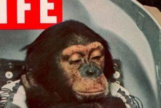 Así fue el viaje de Enos, el primer chimponauta orbital