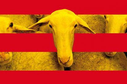 La cuarta parte de los españoles ya boicotea los productos de Cataluña