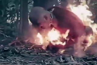 El vídeo más escalofriante del derrotado ISIS: 'Flames of War II'