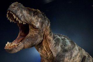 La dentadura de un T-Rex joven tenía la misma potencia que la de un cocodrilo adulto