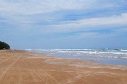 """Hallan esta misteriosa y """"horrible"""" criatura dentada en una playa de Australia"""