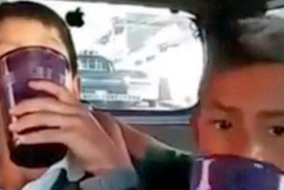 Indignación en México al ver la grabación de dos niños emborrachándose con mezcal