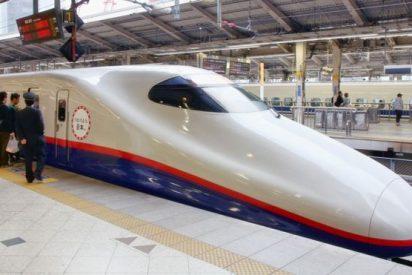 El hobby de un ingeniero japonés permitió resolver el gran problema del famoso tren bala