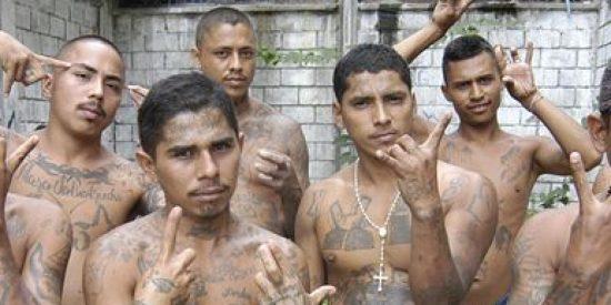 Pandilleros: las 10 bandas más peligrosas del mundo