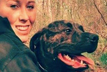 ¿Por qué un perro ataca a su dueño hasta matarlo?