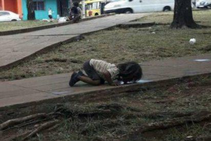 Conmoción por esta triste imagen de una niña bebiendo agua de un charco de la calle
