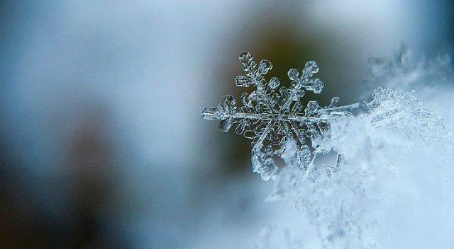 La oración de la nieve