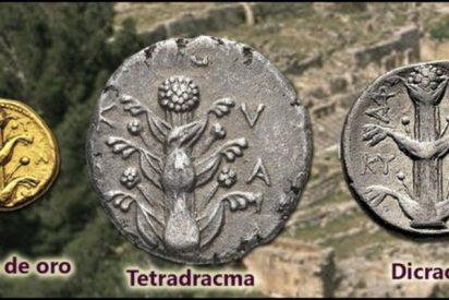 El enigma de la planta 'milagrosa' que seducía a griegos y romanos y desapareció sin dejar rastro