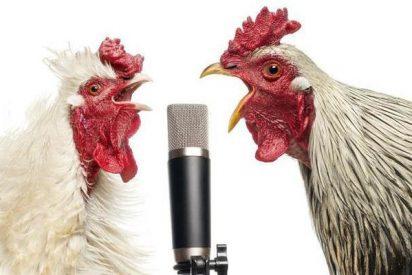 ¿Se te pone la piel de gallina al oír algunas canciones?... Pues tu cerebro es especial