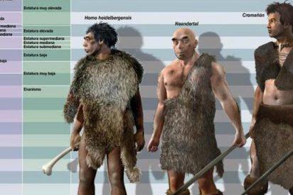 Los hominidos del Pleistoceno andaban tan eficientemente como los hombres actuales