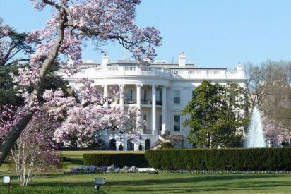 ¿Sabes por qué Melania Trump va a cortar el bicentenario magnolio de la Casa Blanca?