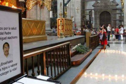 Martirio cristiano en México: 17 sacerdotes, tres religiosos y 5 laicos asesinados