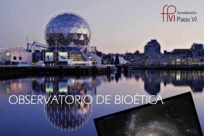 La Sociedad Española de Oncología avala el Curso de Bioética de la Fundación Pablo VI