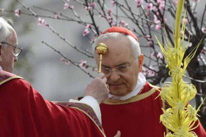 """Piacenza: """"La confesión no hace ruido pero sí milagros"""""""