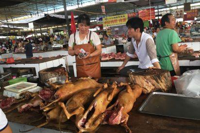 El Gobierno comunista de Pekín saca a los perros de la lista de animales que permite comer a los chinos