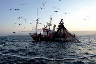 Más de 300 barcos chinos 'saquean' el mar de Perú a través de la pesca ilegal