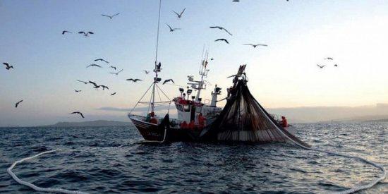El Ejército de Chile denuncia que pesqueros chinos cruzaron el Estrecho de Magallanes