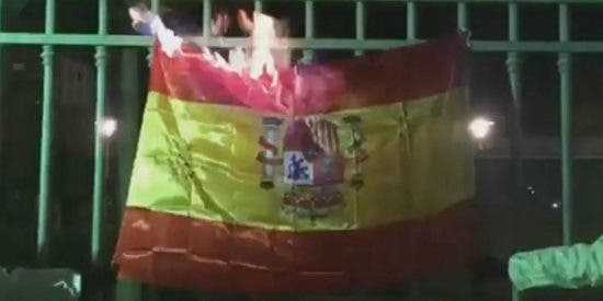 Así queman una bandera española los cobardes cachorros de la CUP en Mallorca