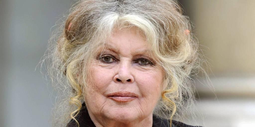 """Brigitte Bardot: """"Di mi juventud y mi belleza a los hombres"""""""