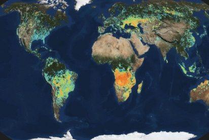 El enigma del metano: ¿Por qué aumentan las emisiones?