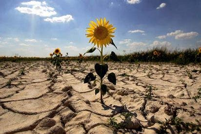 Escenarios extremos de calentamiento global, rebajados un 60 por ciento